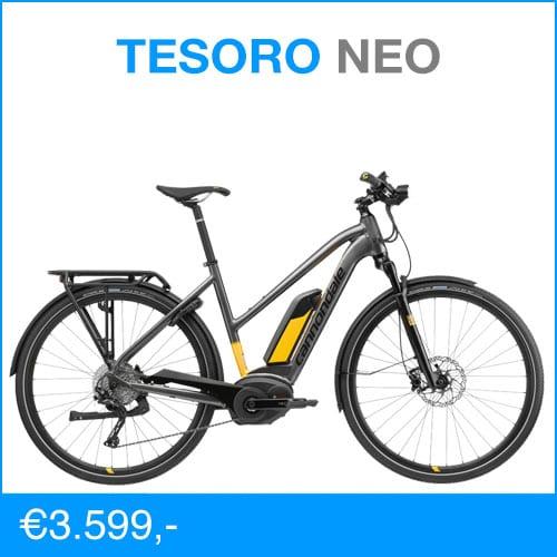 Cannondale Tesoro Neo