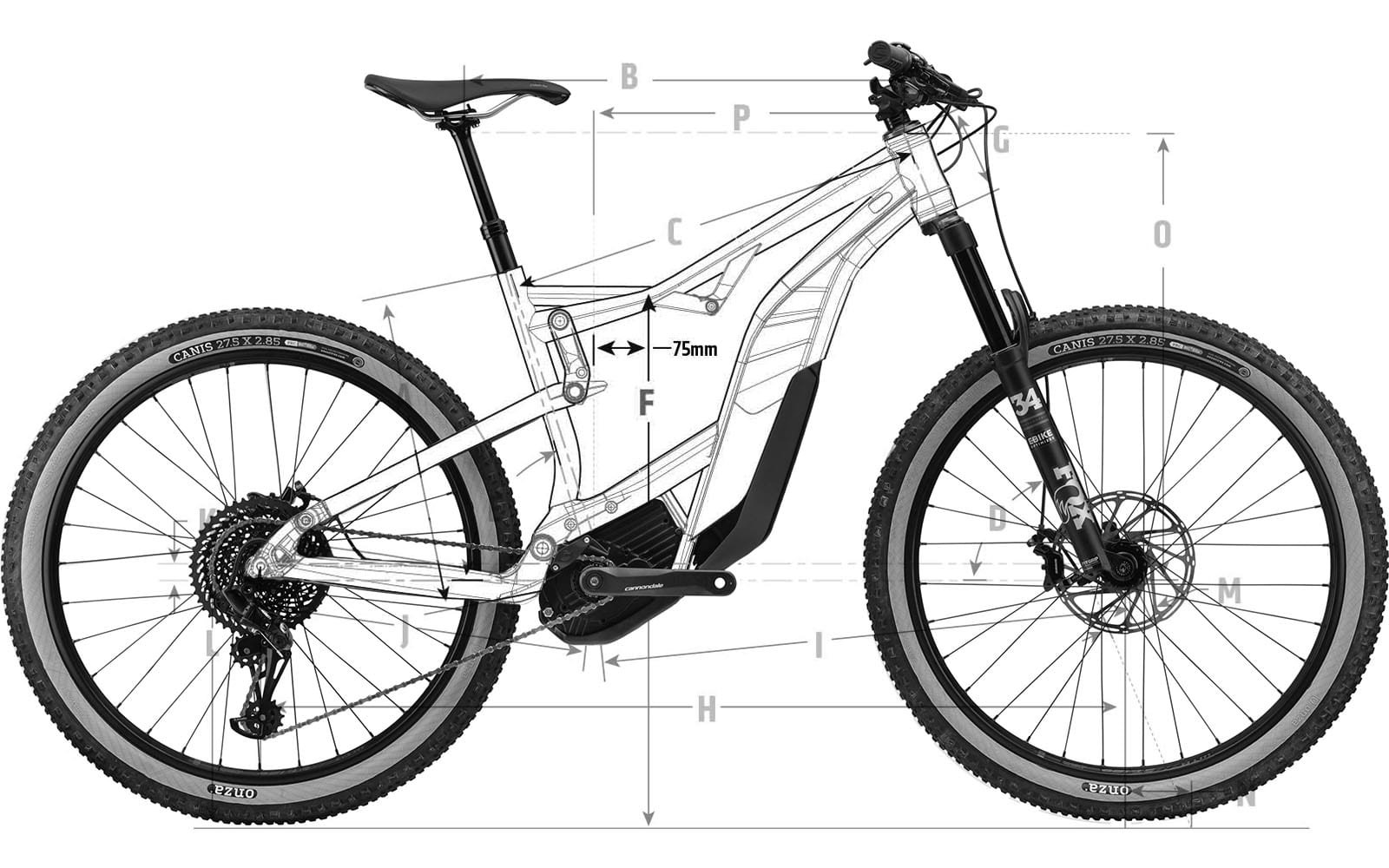 Cannondale-Moterra-drawing